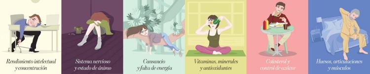 www-salus-es4