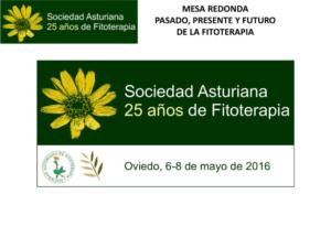 Mesa Redonda_oviedo-thumbnail